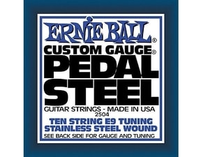 2504 Pedal Steel Stainless Steel Wound 10-String E9 Tunning