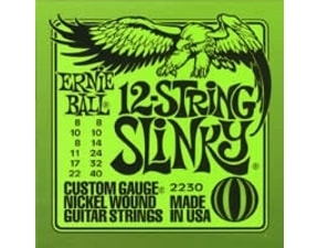 2230 12-string Slinky Nickel Wound