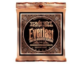 2546 Ernie Ball Everlast Phosphor Bronze - 12 / 54