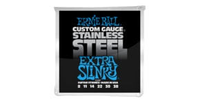 2249 Ernie Ball Stainless Steel Extra Slinky .008 - .038