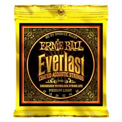 2556 Ernie Ball Everlast 80/20 Bronze - 12 / 54